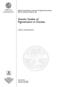 Genetic Studies of Pigmentation in Chicken