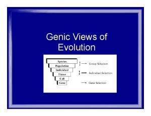 Genic Views of Evolution