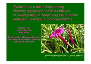 George Tiley Lauren Eserman. Department of Biological Sciences Southeastern Louisiana University Hammond, Louisiana