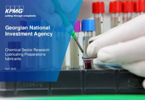 Georgian National Investment Agency