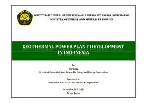 GEOTHERMAL POWER PLANT DEVELOPMENT IN INDONESIA