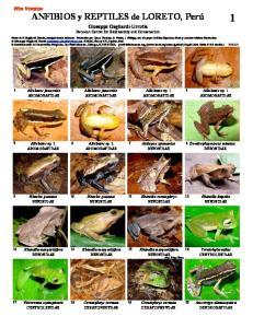 Giuseppe Gagliardi-Urrutia Peruvian Center for Biodiversity and Conservation