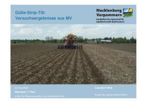 Gülle-Strip-Till: Versuchsergebnisse aus MV