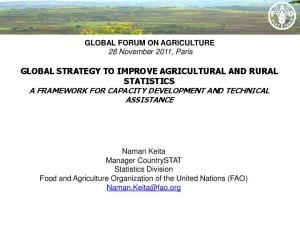 GLOBAL STRATEGY TO IMPROVE AGRICULTURAL AND RURAL STATISTICS A FRAMEWORK FOR CAPACITY DEVELOPMENT AND TECHNICAL ASSISTANCE