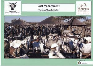Goats MRDP and Heifer