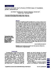 gondii in Escherichia coli