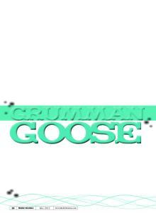 Goose. by Paul Kohlmann