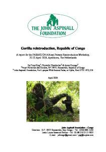 Gorilla reintroduction, Republic of Congo