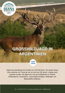GROSSWILDJAGD IN ARGENTINIEN