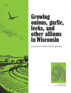 Growing onions, garlic, leeks, and other alliums in Wisconsin