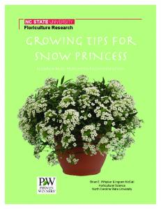 Growing Tips for SNOW PRINCESS