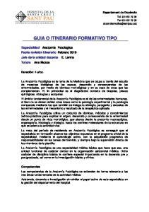 GUIA O ITINERARIO FORMATIVO TIPO