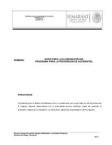 GUIAS PARA LA ELABORACION DEL PROGRAMA PARA LA PREVENCION DE ACCIDENTES