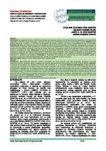 GYSLANE OLIVEIRA DOS SANTOS WILSON FACHINI FILHO JAIRO A. M. DOS SANTOS MIRNA RIBEIRO PORTO