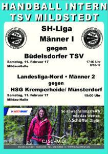 HANDBALL INTERN TSV MILDSTEDT