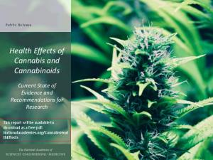 Health Effects of Cannabis and Cannabinoids