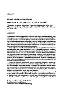 HEAVY MINERALS IN SHALES. MATTHEW W. TOTTEN a AND MARK A. HANAN b. Chapter 12 LA 70148, USA ABSTRACT