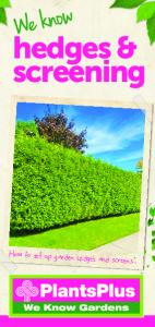 hedges & screening How to set up garden hedges and screens