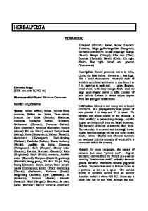 HERBALPEDIA TURMERIC. Curcuma longa [KER-koo-muh LONG-uh] Pharmaceutical Name: Rhizoma Curcumae. Family: Zingiberaceae