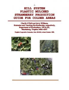 HILL SYSTEM PLASTIC MULCHED STRAWBERRY PRODUCTION GUIDE FOR COLDER AREAS