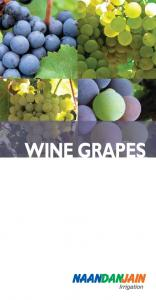 HISTORY. Top Ten Grape Wine Producing Countries*