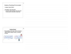 Homeostasis. Anatomy, Physiology & Homeostasis. Anatomy: study of form