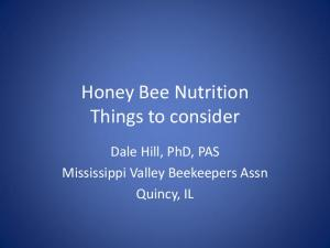Honey Bee Nutrition Things to consider. Dale Hill, PhD, PAS Mississippi Valley Beekeepers Assn Quincy, IL