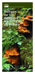Hongos de los Bosques Nacionales de Alaska