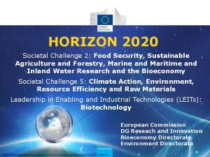 HORIZON European Commission DG Reseach and Innovation Bioeconomy Directorate Environment Directorate