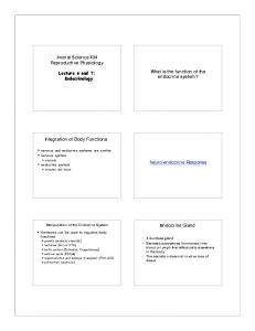 Hormone. Exocrine Gland. Endocrine Glands. Classification and Properties of Hormone. Classification and Properties of Hormone