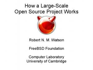 How a Large-Scale Open Source Project Works