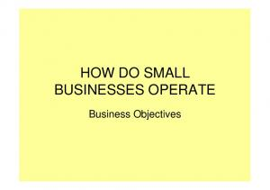 HOW DO SMALL BUSINESSES OPERATE. Business Objectives
