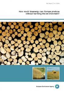 How much bioenergy can Europe produce without harming the environment?