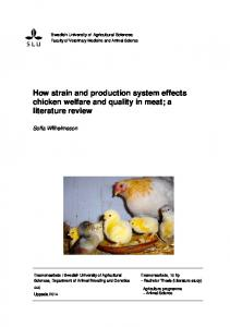 How strain and production system effects chicken welfare and quality in meat; a literature review
