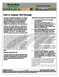 How to Assess Hail Damage