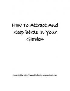 How To Attract And Keep Birds In Your Garden