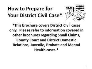 How to Prepare for Your District Civil Case*