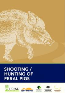 HUNTING OF FERAL PIGS