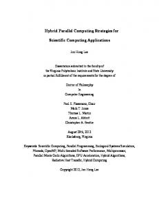 Hybrid Parallel Computing Strategies for. Scientific Computing Applications