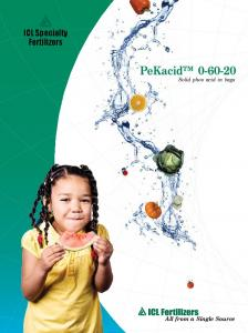 ICL Specialty Fertilizers. PeKacid Solid phos acid in bags. All from a Single Source