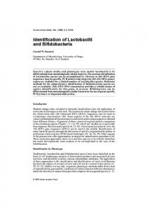 Identification of Lactobacilli and Bifidobacteria
