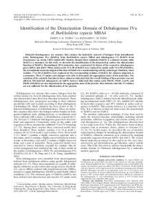 Identification of the Dimerization Domain of Dehalogenase IVa of Burkholderia cepacia MBA4