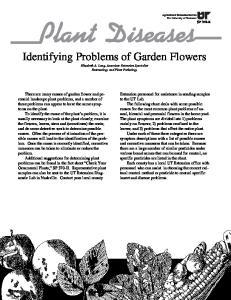 Identifying Problems of Garden Flowers