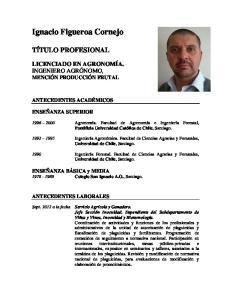 Ignacio Figueroa Cornejo