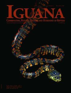 IGUANA VOLUME 13, NUMBER 4 DECEMBER International Reptile Conservation Foundation