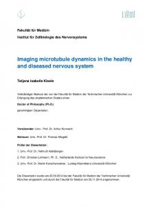 Imaging microtubule dynamics in the healthy and diseased nervous system