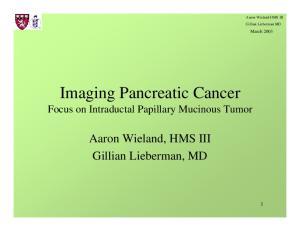 Imaging Pancreatic Cancer Focus on Intraductal Papillary Mucinous Tumor