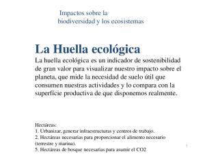 Impactos sobre la biodiversidad y los ecosistemas