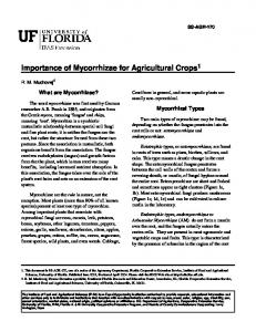 Importance of Mycorrhizae for Agricultural Crops 1