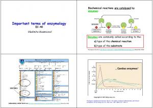 Important terms of enzymology EC-40